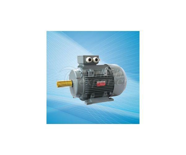 Cast Iron Electric Motors