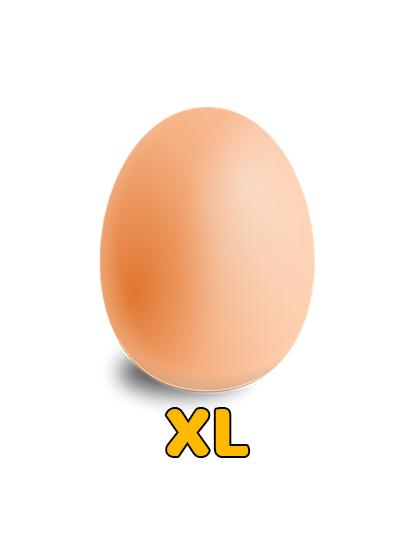 XL Size Egg