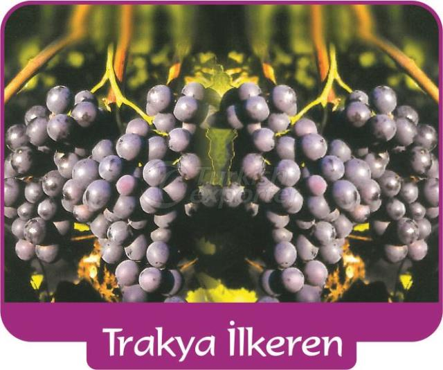 Виноград Тракья Илькэрен