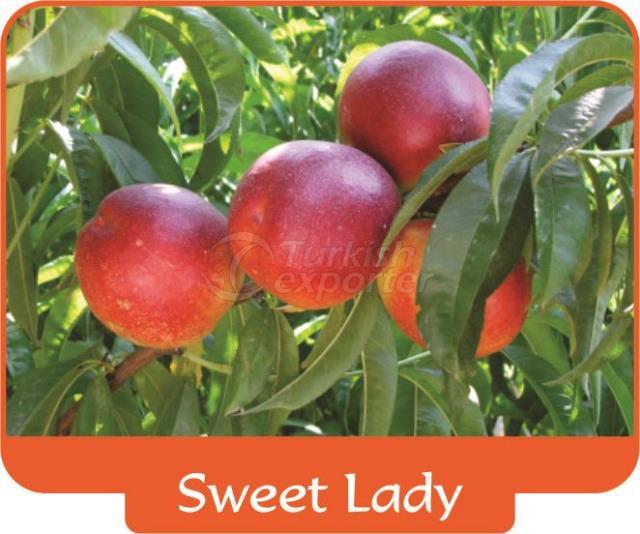 Нектарин Sweet Lady