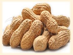 Окованный арахис