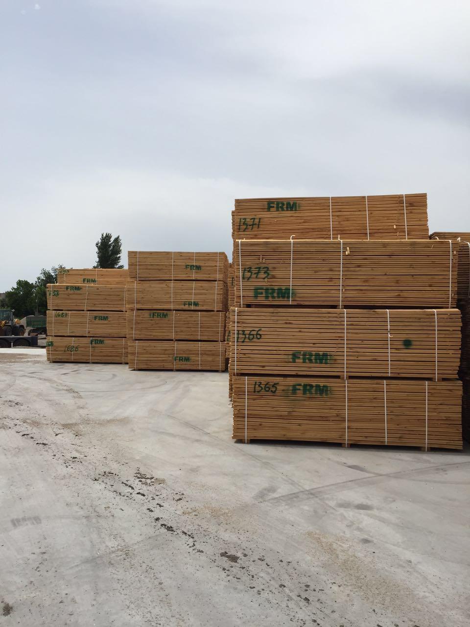 Timber 5077