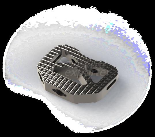 Biomech Anterior Lumbar Interbody Fusion Peek Cage (Alif)