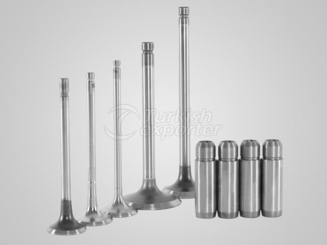Engine Valves and Liners GUNES