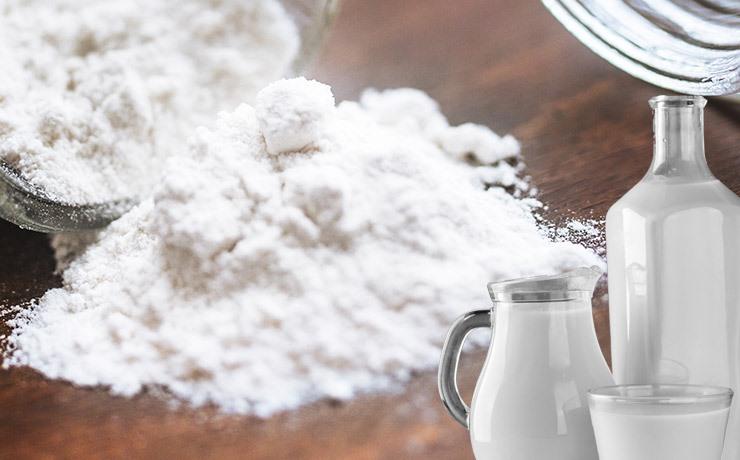Productos lácteos en polvo