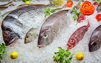 Frozen Sea Food