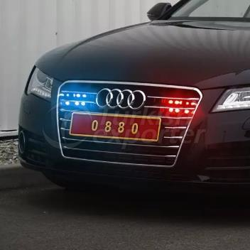 Official State Car Plates For Protocol