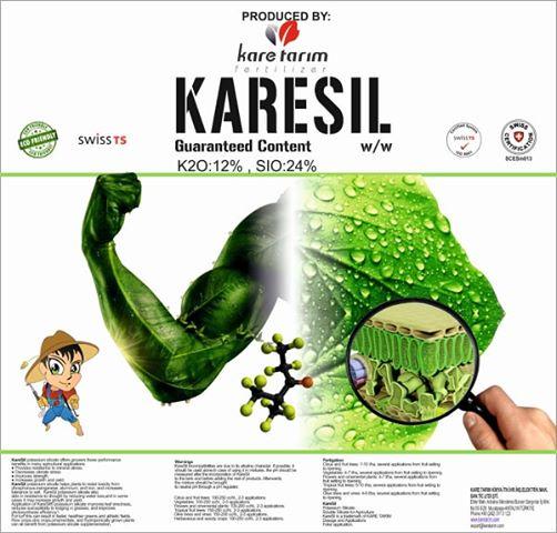 Potassium Silicate KARESIL