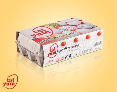 15 Pack L-Large 63-72 gr 017