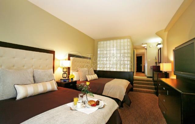 Hotel Concept-Luxury Room Furnishing