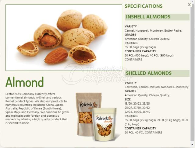 Almond-Information