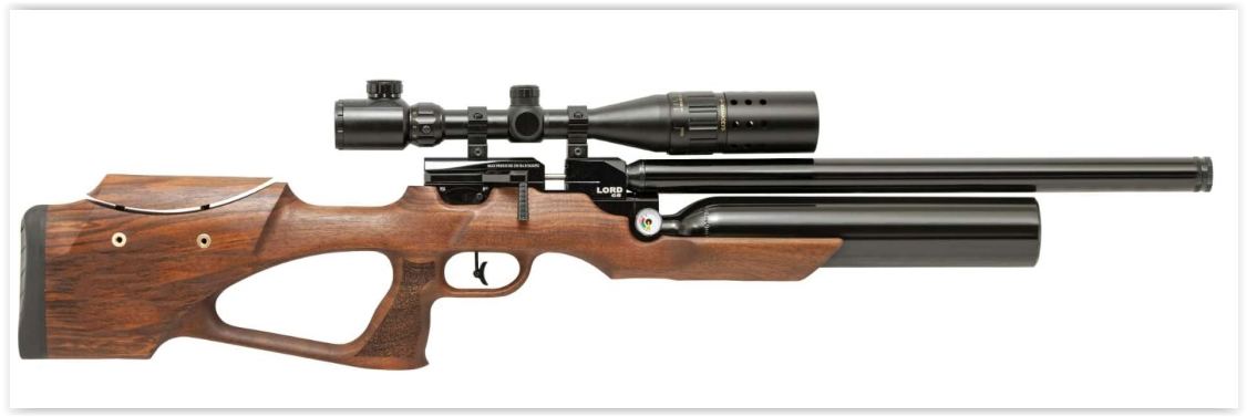 PCP Air Rifle - PCP-01